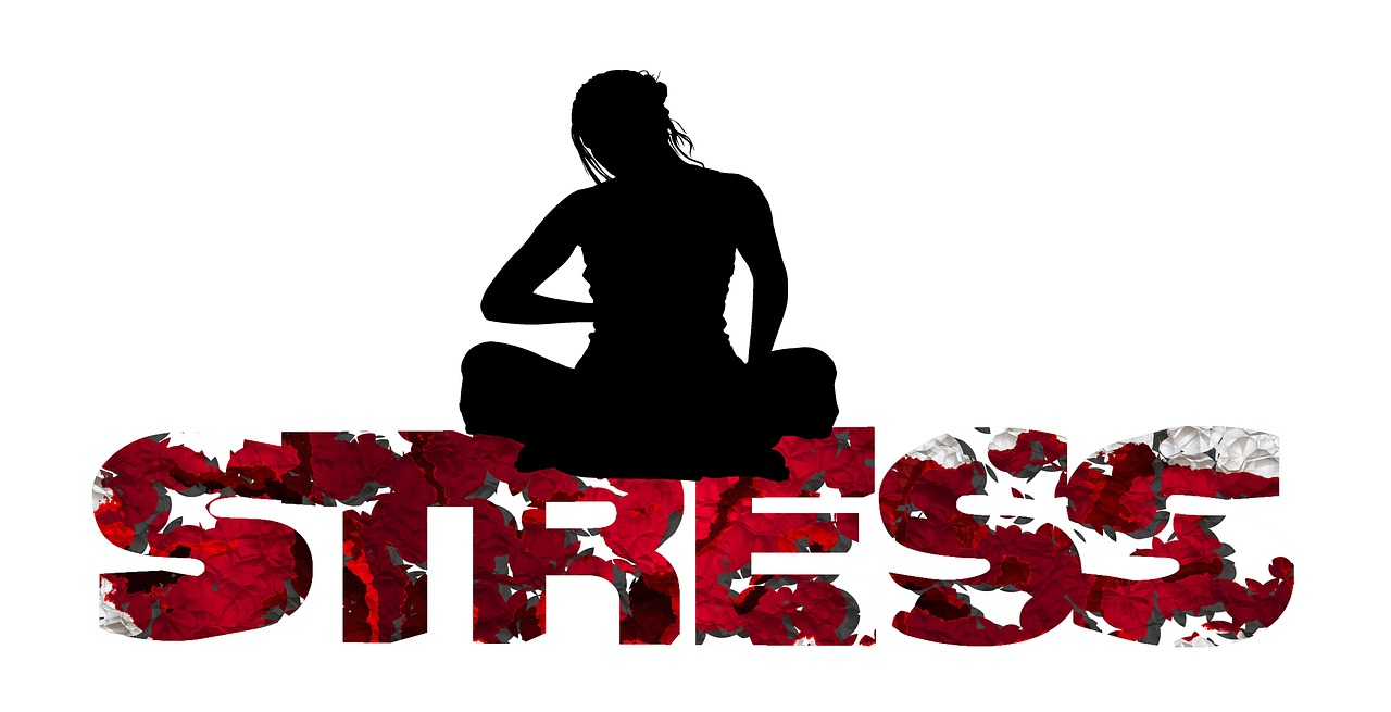Ayurveda & Stress - Ayurveda Wandelcoaching
