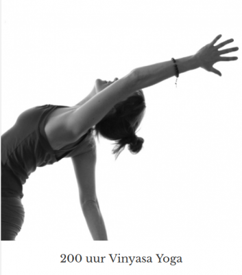 Yogapoint Vinyasa Yogaopleiding in combinatie met Ayurveda Wandelcoaching